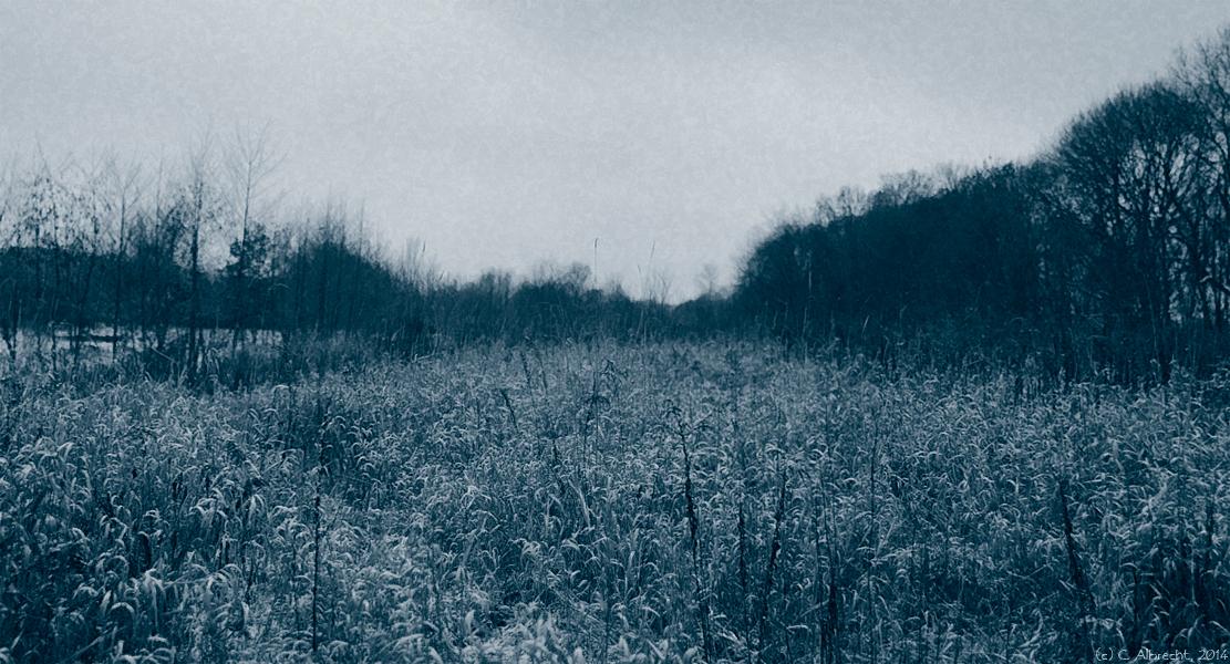 Naturraum Wuhletal